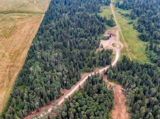 Photo 15: 31339 Rge Rd 55: Rural Mountain View County Land for sale : MLS®# A1136736