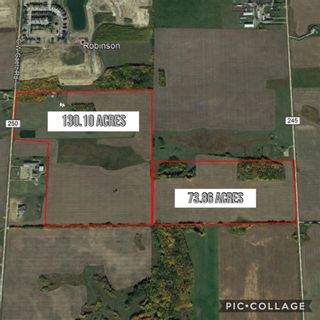 Photo 14: 49279 RR250: Rural Leduc County Rural Land/Vacant Lot for sale : MLS®# E4141338