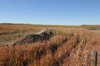 Photo 7: 59216 Rg Rd 95A: Rural St. Paul County Rural Land/Vacant Lot for sale : MLS®# E4266221