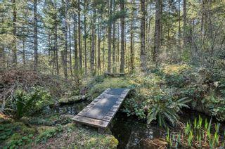 Photo 69: 855 Hope Spring Rd in : Isl Quadra Island House for sale (Islands)  : MLS®# 873398