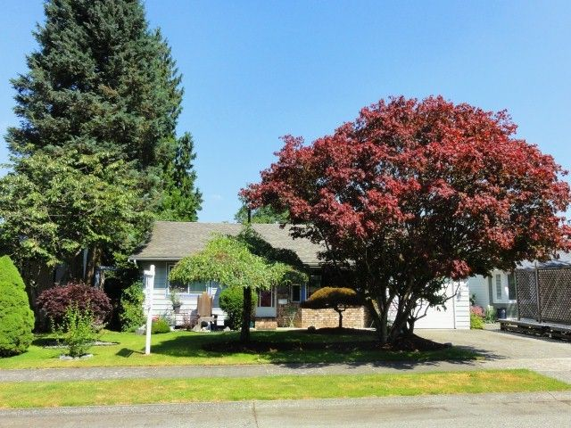 Main Photo: 19923 46A AV in Langley: Langley City House for sale : MLS®# F1309433