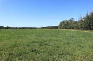 Photo 5: Hwy 622 RR 15: Rural Leduc County Rural Land/Vacant Lot for sale : MLS®# E4261453