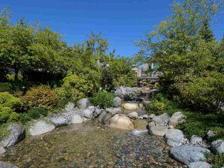 "Photo 36: 307 13860 70 Avenue in Surrey: East Newton Condo for sale in ""Chelsea Gardens"" : MLS®# R2532717"