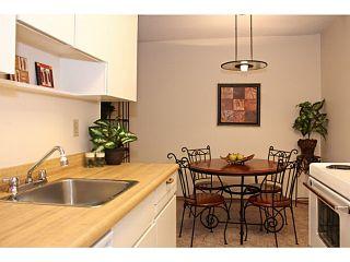 Photo 9: # 309 265 E 15TH AV in Vancouver: Mount Pleasant VE Condo for sale (Vancouver East)  : MLS®# V1012093