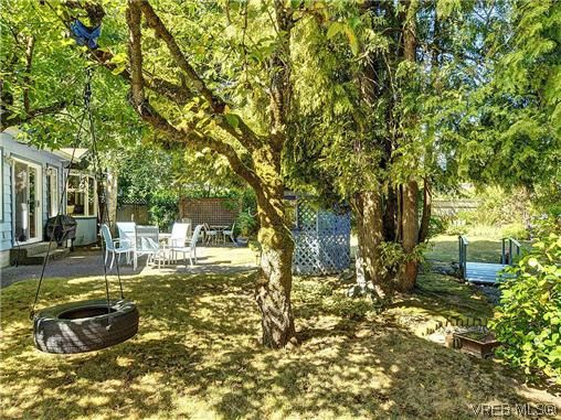 Photo 19: Photos: 770 Claremont Avenue in VICTORIA: SE Cordova Bay Residential for sale (Saanich East)  : MLS®# 318618