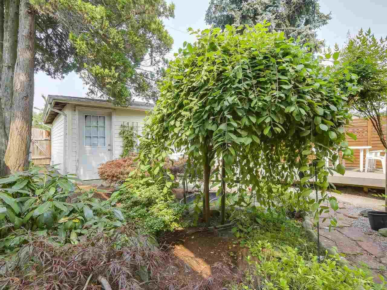 Photo 17: Photos: 165 E 55TH AVENUE in Vancouver: South Vancouver House for sale (Vancouver East)  : MLS®# R2297472
