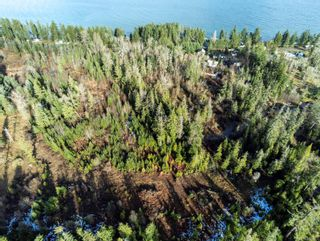 Photo 7: Lot B S Island Hwy in Campbell River: CR Campbell River South Land for sale : MLS®# 887125
