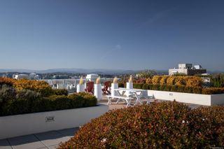 Photo 21: 439 770 Fisgard St in Victoria: Vi Downtown Condo for sale : MLS®# 886610