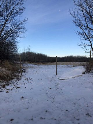 Photo 2: 160 Acres NW18-56-10-W4th: Rural St. Paul County Rural Land/Vacant Lot for sale : MLS®# E4236442