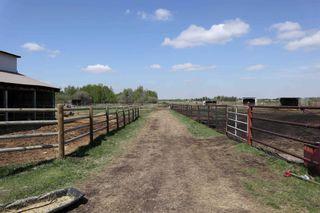 Photo 27: 48342 RR 262: Rural Leduc County House for sale : MLS®# E4231120