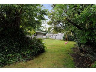 Photo 9: 578 W KINGS Road in North Vancouver: Upper Lonsdale House for sale : MLS®# V851575