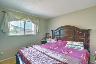 Photo 21: 217 Templemont Drive NE in Calgary: Temple Semi Detached for sale : MLS®# A1120693