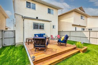 Photo 39: 173 Martinglen Way NE in Calgary: Martindale Detached for sale : MLS®# A1144697