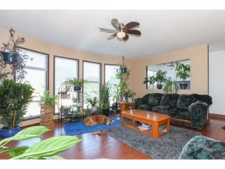 Photo 12: 2941 267B Street in Langley: Home for sale : MLS®# F1446771