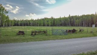 Photo 34: 231175 Bracken Road in Rural Rocky View County: Rural Rocky View MD Land for sale : MLS®# A1116621