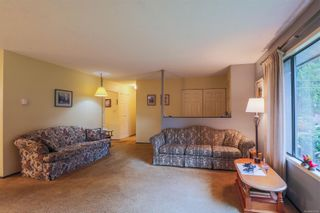 Photo 3: 203 Cadboro Pl in : Na University District House for sale (Nanaimo)  : MLS®# 867094