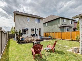 Photo 38: 607 New Brighton Drive SE in Calgary: New Brighton Detached for sale : MLS®# C4299788