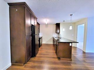 Photo 10: 438 6076 SCHONSEE Way in Edmonton: Zone 28 Condo for sale : MLS®# E4260047