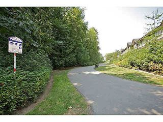 Photo 17: 51 20176 68 AVENUE in Langley: Willoughby Heights Home for sale ()  : MLS®# F1449385