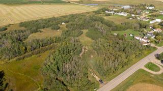 Photo 7: 55328 RRG 265: Rural Sturgeon County Rural Land/Vacant Lot for sale : MLS®# E4138970