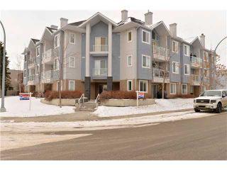 Photo 19: # 304 3501 15 ST SW in CALGARY: Altadore Condo for sale (Calgary)  : MLS®# C3598929