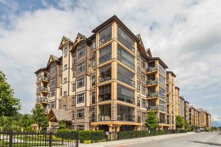 """Photo 1: 105 8157 207 Street in Langley: Willoughby Heights Condo for sale in """"YORKSON CREEK PARKSIDE 2"""" : MLS®# R2474244"""