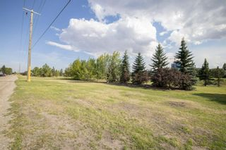 Photo 41: 2719 41A Avenue SE in Calgary: Dover Detached for sale : MLS®# A1132973