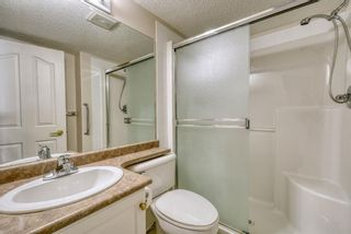 Photo 16: 3117 6818 Pinecliff Grove NE in Calgary: Pineridge Apartment for sale : MLS®# A1069420