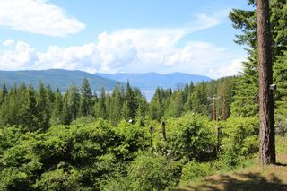 Photo 30: 6095 Squilax Anglemomt Road in Magna Bay: North Shuswap House for sale (Shuswap)