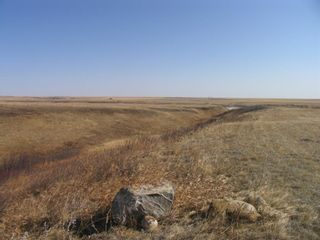 Photo 11: 1 Pine Coulee Ranch in Rural Willow Creek No. 26, M.D. of: Rural Willow Creek M.D. Residential Land for sale : MLS®# A1090094