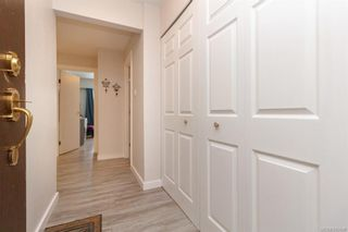 Photo 1: 211 1005 McKenzie Ave in Saanich: SE Quadra Condo for sale (Saanich East)  : MLS®# 843439
