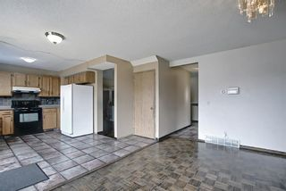 Photo 14: 23 Applecrest Court SE in Calgary: Applewood Park Detached for sale : MLS®# A1079523