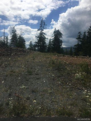 Photo 5: 6600 Thomas Way in : NI Port Hardy Land for sale (North Island)  : MLS®# 850238