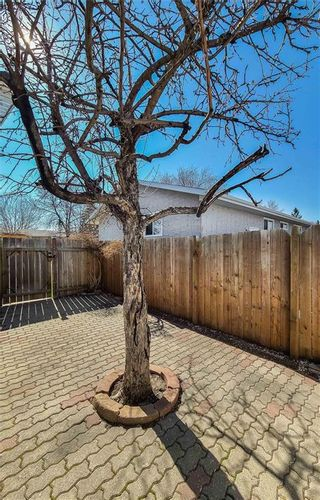 Photo 23: 11 Nugent Road in Winnipeg: Mission Gardens Residential for sale (3K)  : MLS®# 202110432