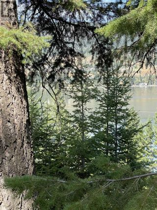 Photo 6: 1803 SOUTH LAKESIDE DRIVE in Williams Lake: Vacant Land for sale : MLS®# R2612495