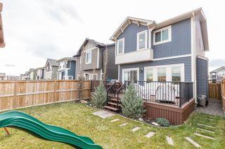 Photo 43: 12 Morgan Street: Cochrane Detached for sale : MLS®# A1048324