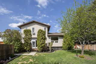 Photo 35: 31 Mchugh Place NE in Calgary: Mayland Heights Detached for sale : MLS®# A1111155