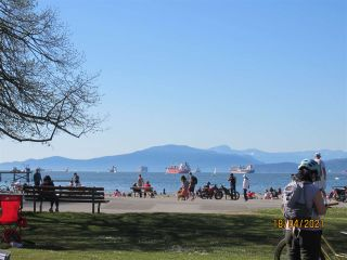 """Photo 24: 210 2330 MAPLE Street in Vancouver: Kitsilano Condo for sale in """"Maple Gardens"""" (Vancouver West)  : MLS®# R2566982"""