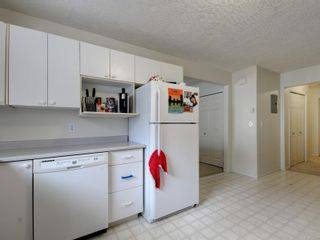 Photo 28: 3908 Lianne Pl in : SW Strawberry Vale House for sale (Saanich West)  : MLS®# 875878