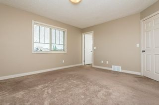 Photo 33: 3814 Allan Drive in Edmonton: Zone 56 Attached Home for sale : MLS®# E4255416