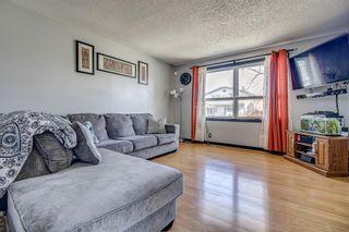 Photo 4: 143 Castleglen Way NE in Calgary: Castleridge Detached for sale : MLS®# A1100351