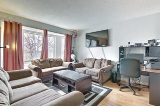 Photo 7: 142 Martindale Boulevard NE in Calgary: Martindale Detached for sale : MLS®# A1111282