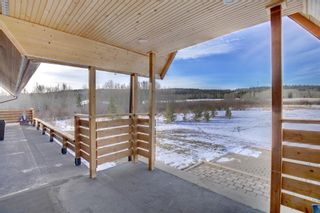 Photo 26: 186112 256 Street W: Priddis Detached for sale : MLS®# A1050704