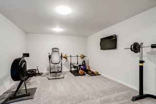 Photo 20: 4 Copperstone Landing SE in Calgary: Copperfield Detached for sale : MLS®# A1147039