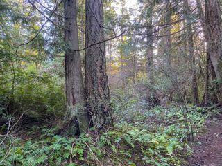 Photo 8: Lt 31 Wildwood Cres in : Isl Gabriola Island Land for sale (Islands)  : MLS®# 863197