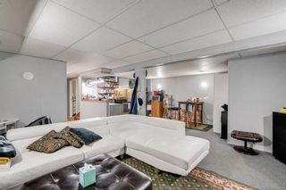 Photo 14: 10 Abalone Crescent NE in Calgary: Abbeydale Detached for sale : MLS®# A1072255