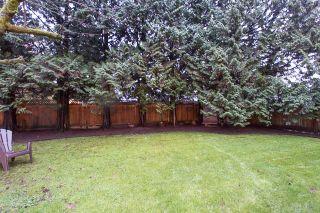 Photo 18: 21150 GLENWOOD Avenue in Maple Ridge: Northwest Maple Ridge House for sale : MLS®# R2124899