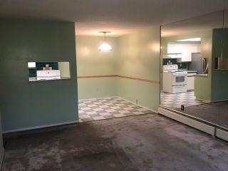 Photo 4: 110 444 E 6TH Avenue in Vancouver: Mount Pleasant VE Condo for sale (Vancouver East)  : MLS®# R2257431
