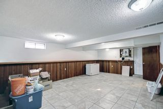 Photo 37: 1931 Pinetree Crescent NE in Calgary: Pineridge Detached for sale : MLS®# A1153335