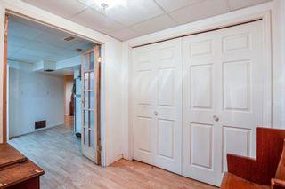 Photo 24:  in Edmonton: Zone 22 House for sale : MLS®# E4254166